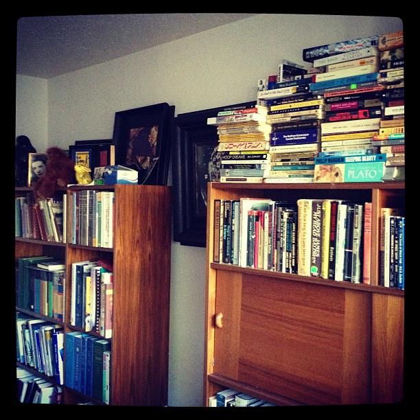Education / Harlem Ren / Poetry / Fiction